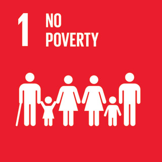 1- No Poverty